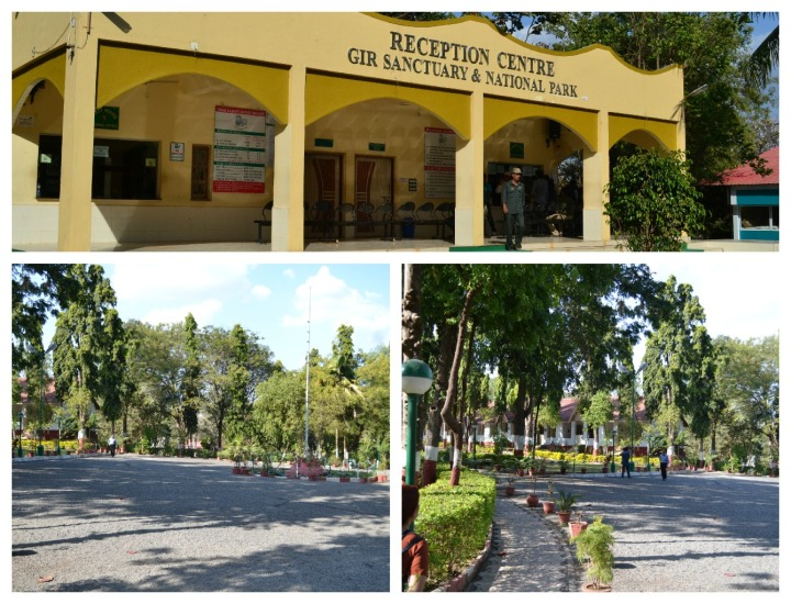 The Forest Department - Reception & Guest rooms